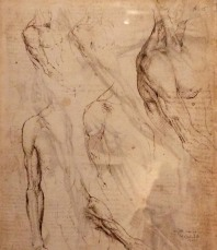 LDV_anatomy2